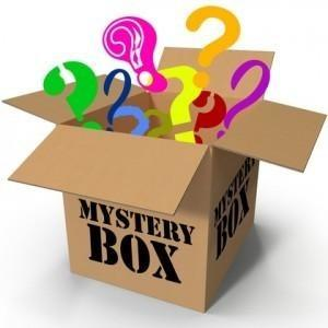 Beginners Spring Action Mystery Box